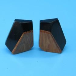 Marion Godart Black Resin and Wood Earrings